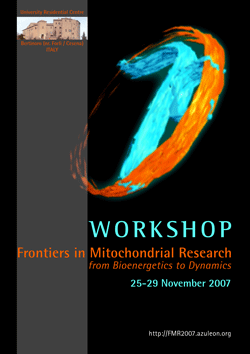 FMR_2007_poster